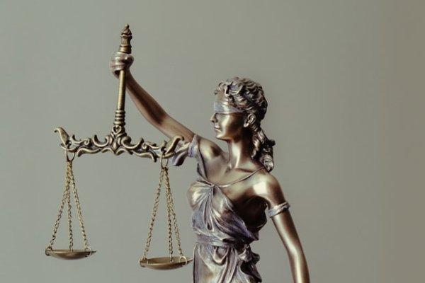 Justice patwillisedu.com
