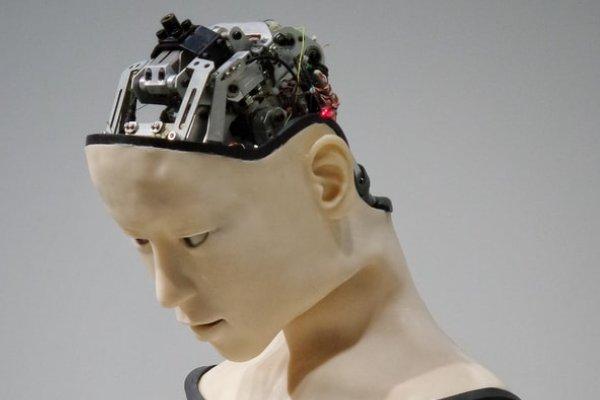 minds and machines patwillisedu.com